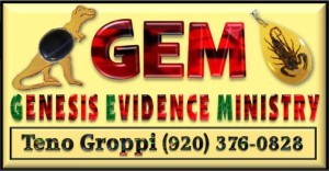 GEM logo Williams